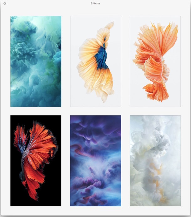 live wallpapers for iphone 6-trendinindia
